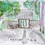 寿福寺の総門くぐり夏の蝶